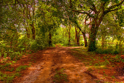Old_dirt_road