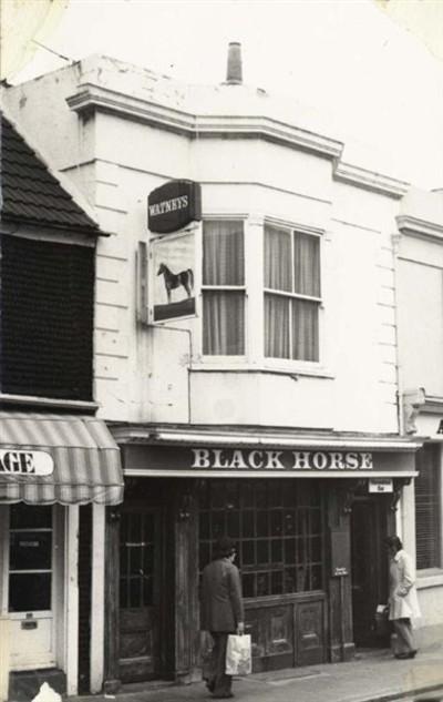 Black_horse11